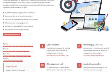 Site Web FenuaGeeks